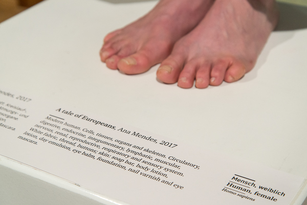 a tale of Europeans, performance, durational, 2017, exhibition view, Universal Museum Joanneum/Natural History Museum, Graz. Photos (c) Lena Prehal  - (review online)